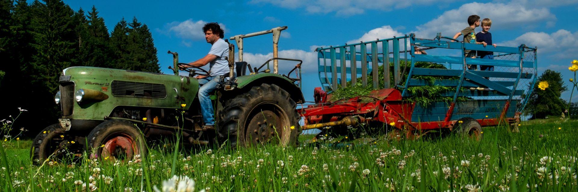 erlebnisurlaub-bayerischer-wald-erlebnisbauernhof-traktor