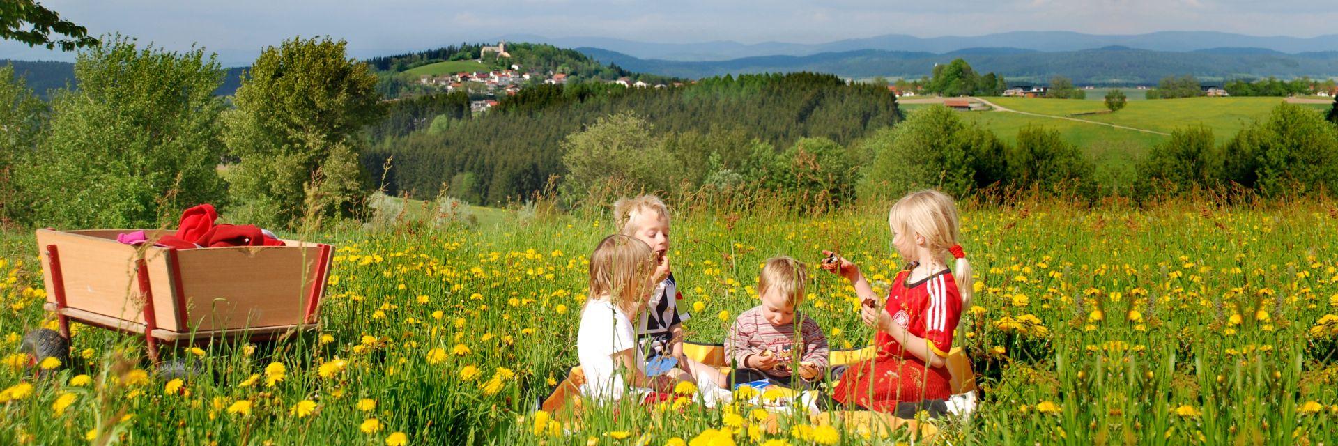 familien-kinderurlaub-bayerischer-wald-natururlaub-landschaft